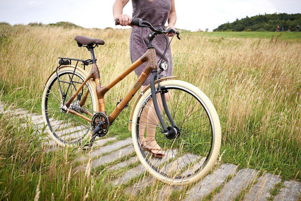 La imagen tiene un atributo ALT vacío; su nombre de archivo es bicicleta-de-bambú-12-1024x683.jpg