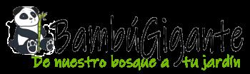 Tienda de productos de bambú actualizados en 2020