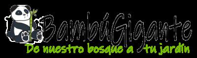 BAMBÚGIGANTE