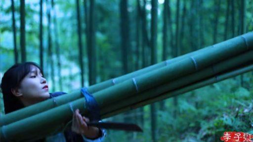 Como atar y trasportar cañas de bambú recién cortadas