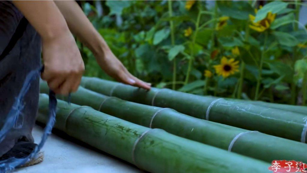 como se secan las cañas de bambú para usarlas en construcción de muebles