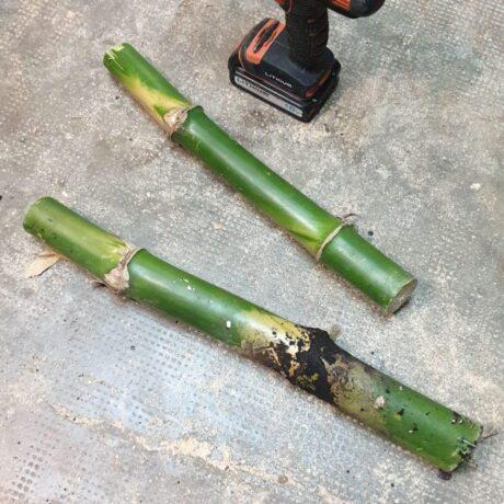 nudos de bambu