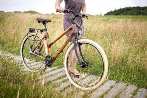 bicicleta de bambu tienda 2020