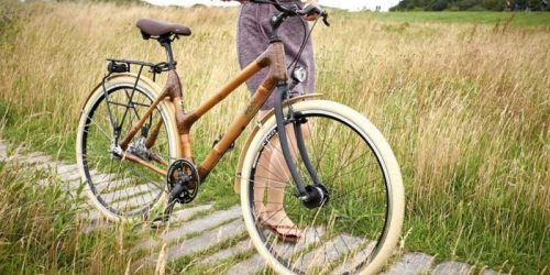 bicicleta de bambu 2020