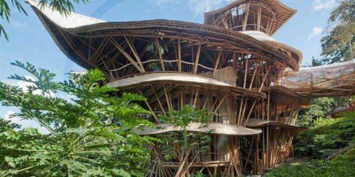 CONSTRUCCIÓN CON BAMBÚ en 2020