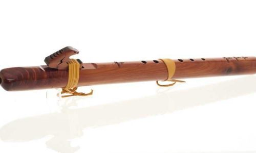 flauta americana india